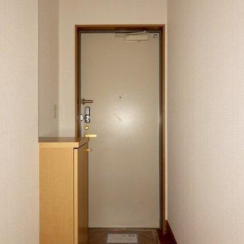 廊下をくねっと曲がって玄関があります。※ 写真は通電前のものです・フラッシュを使用しています