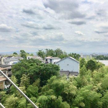 眺望は少路の街並みと緑。