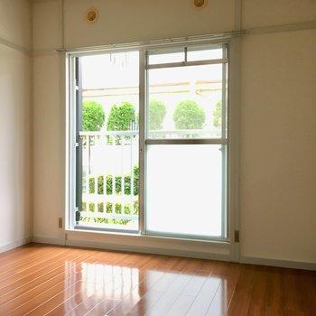 こちらは玄関横の洋室。