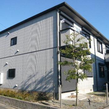 茅ヶ崎8分アパート