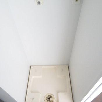 洗面台の横に洗濯機置場があります。※写真は7階の同間取り別部屋のものです