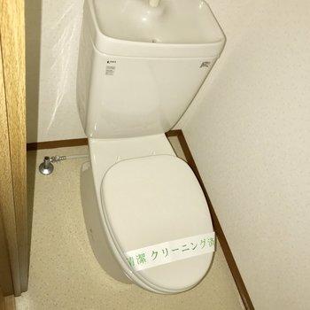 トイレにはお手洗いもついています。※フラッシュを使って撮影しています。