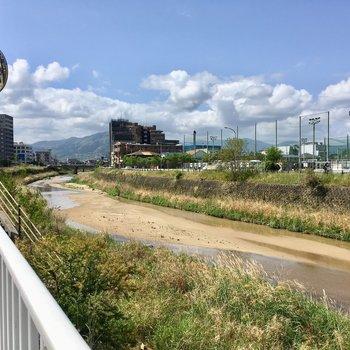 近くには、樋井川。お散歩気持ちよさそう。