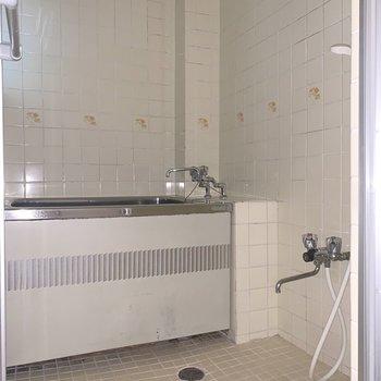 レトロな雰囲気の浴室※写真は通電前のものです。フラッシュを使用して撮影しています