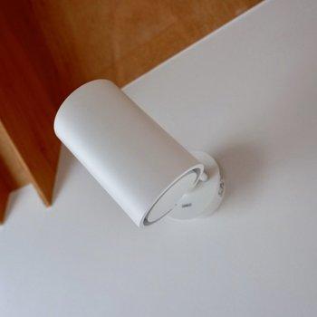 白のスポットライトは向きの調節可能です。