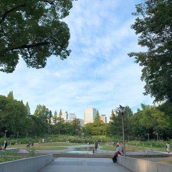 【近隣オススメスポット】近くの靭公園は憩いのスポット。癒やされます。