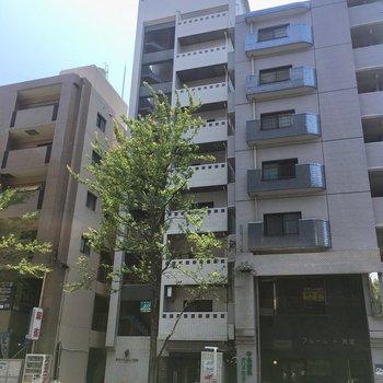 高宮通りにある細長いマンションです。