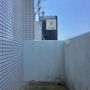 洗濯機置場にちらりと見えていた扉からバルコニーへ!