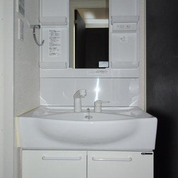 洗面台も大きくて使いやすそう!(※写真は4階の同間取り別部屋のものです)