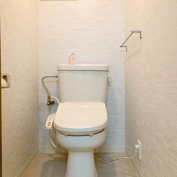 洗面台の向かい、扉を開けるとトイレです。
