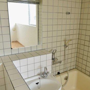 鏡もここに(※写真は2階の反転間取り別部屋のものです)