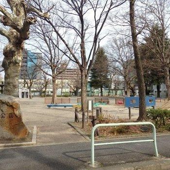 目の前は公園です。のどかな雰囲気