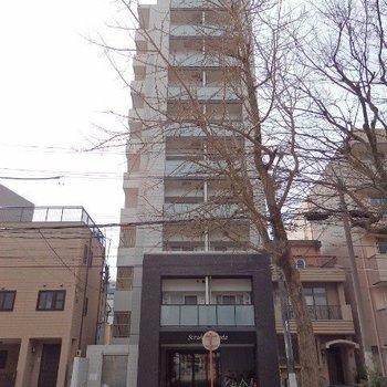 公園前の11階建てのマンションです