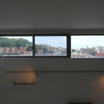 天井の窓から見える景色。あぁ癒やされる・・・。(※写真は清掃前のものです)