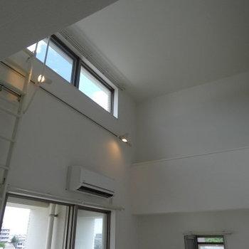 天井が高い!スポットライトが素敵。(※写真は清掃前のものです)