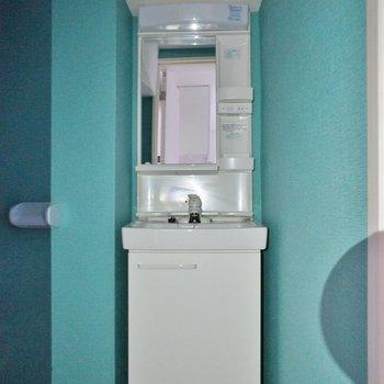 トイレと洗面が同室です。※写真は別部屋