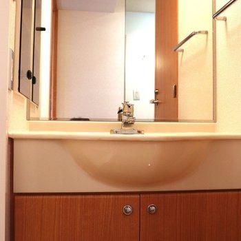 鏡が大きい洗面台