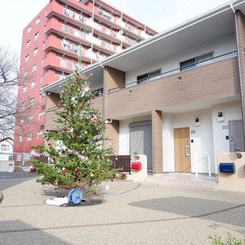 広めの共用部、12月はクリスマスツリーが飾られています