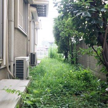お庭はお隣さんと続いているので、ご近所付き合いを大切に