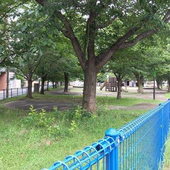 近くには比恵公園。ワンちゃんの散歩にいいですね◯