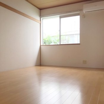 もう1つの洋室には収納あります