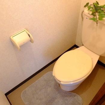 レトロな味わいのトイレです