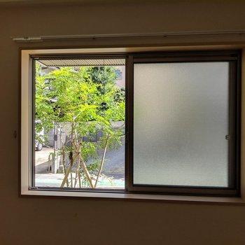 窓からのグリーンが癒やされました♫(※写真は清掃前のものです)