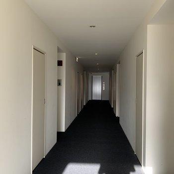共用部】ホテルのようなクールな廊下部分