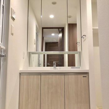 鏡部分が収納になっている独立洗面台