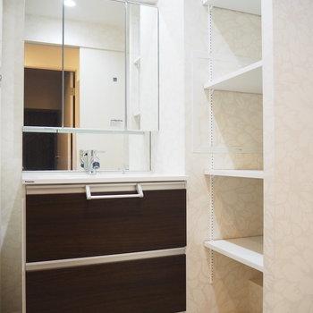 鏡が大きな独立洗面台!