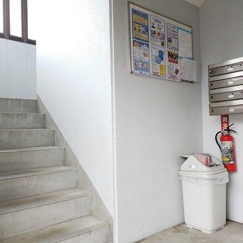 この階段をのぼって5階まで。幅は広くて、家具の搬入は問題なさそうです。