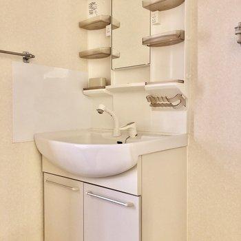 大きな洗面台で朝の準備も捗ります。