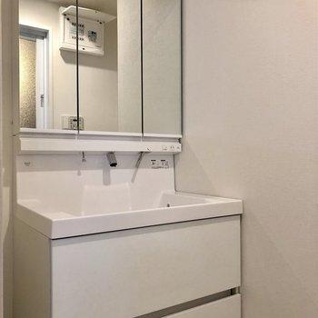 鏡部分が収納になっている洗面台