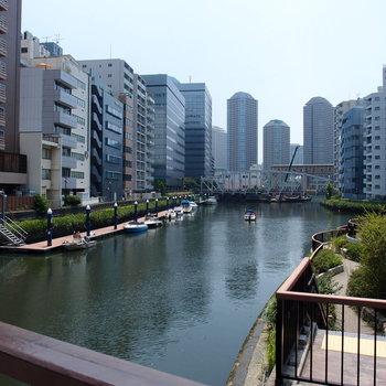 隅田川の流れのそばで