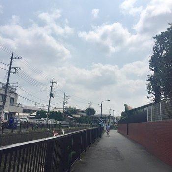 駅前には小川が流れている小道が。ここを辿ると公園にも着きます。お散歩コースにも◎