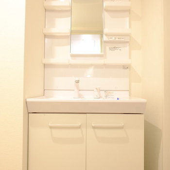 洗面台はおっきいですよ