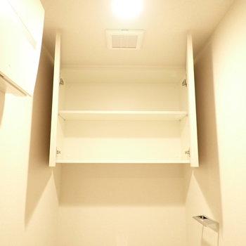上には収納もあります。(※写真は10階の同間取り別部屋のものです)