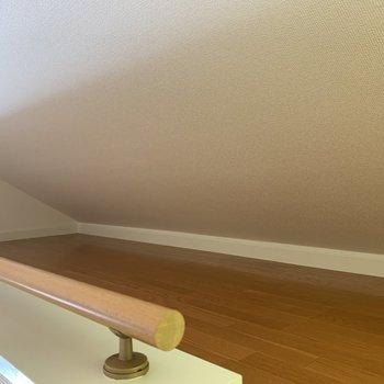 腰も膝も曲げないと天井に当たります〜這うようにしましょう※写真は前回募集時のものです