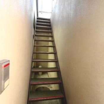 裏口にある階段がこちら