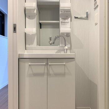 洗面台下の収納にはシャンプーや洗剤などのストックを○(※写真は2階の同間取り別部屋のものです)
