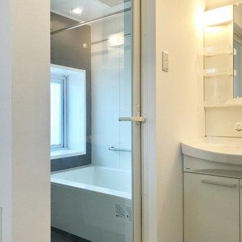 スケルトンの浴室