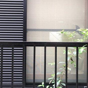 窓の先はお隣さん。目があっちゃいそうなのでカーテン等で対策しましょう