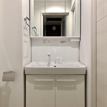 鏡部分が収納になっている独立洗面台です ※写真は2階の同間取り別部屋のものです