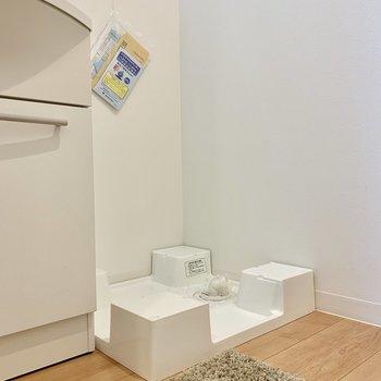 洗濯機はその隣に。