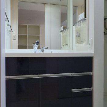 洗面も鏡が多くて、収納たっぷり※写真は同間取り別部屋です