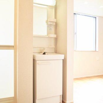 洗面台は浴室の隣にあります