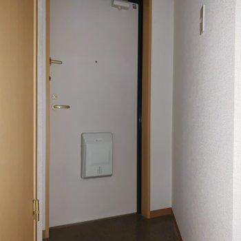 玄関は少し変わった形(※写真はフラッシュ撮影をしています)