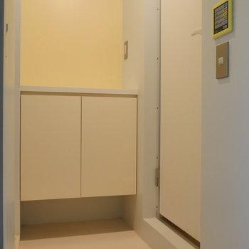 ドアを開けば、脱衣所。 収納あります。※写真は前回募集時のものです