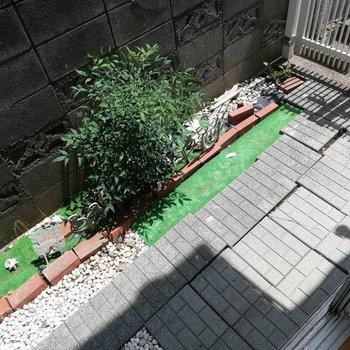 専用庭。お花を育ててみたいな。