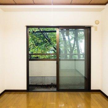 【洋室②】真ん中にはこたつ机を置きたい。